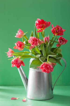 ramo de flores: beautiful pink tulip flowers bouquet in watering can Foto de archivo