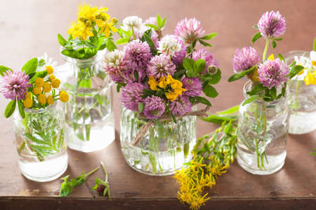 colorful medical flowers and herbs in jars Stock Photo