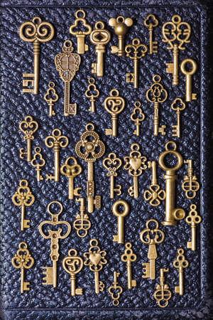 old keys: steampunk old vintage metal keys background on leather