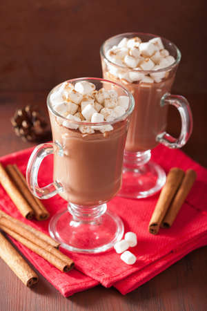 hot drink: hot chocolate with mini marshmallows cinnamon winter drink