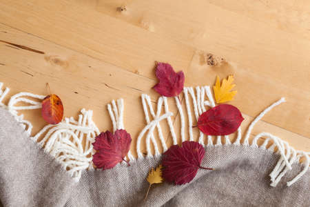 snug: warm wool throw autumn red leaves on wooden background