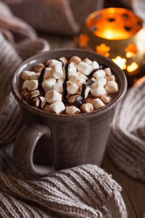 hot drink: hot chocolate with mini marshmallows warming drink