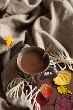 hot chocolate warming drink wool throw cozy autumn leaves 写真素材