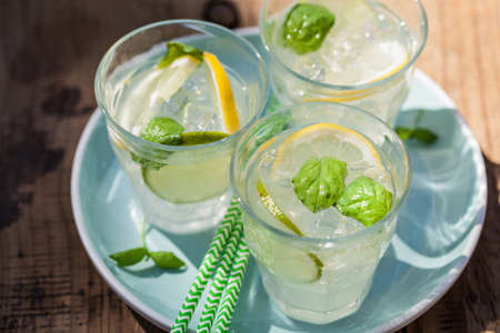 refreshing lemonade drink with mint lime lemon in garden Banco de Imagens