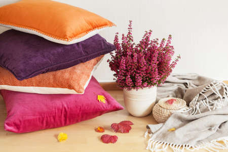 colorful cushions throw cozy home autumn mood flower 스톡 콘텐츠