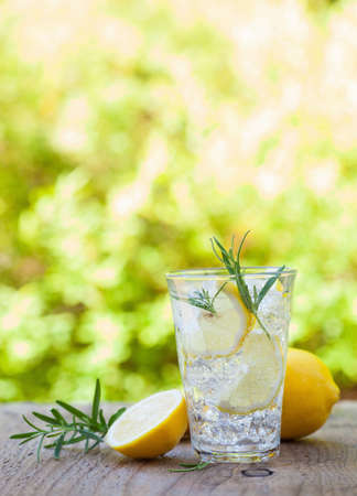 refreshing lemonade drink with rosemary in glasses Stok Fotoğraf - 84528520