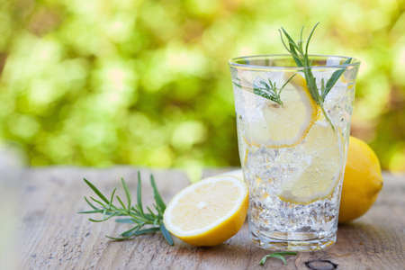 refreshing lemonade drink with rosemary in glasses Stockfoto - 101498737
