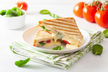 Sándwich de tomate y queso asado sobre fondo blanco.