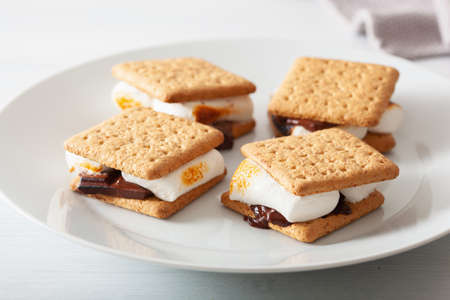 homemade marshmallow s'mores with chocolate on crackers Reklamní fotografie - 101929138