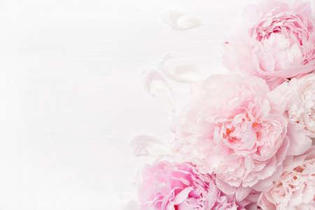 아름다운 분홍색 모란 꽃 배경 스톡 콘텐츠 - 102402294