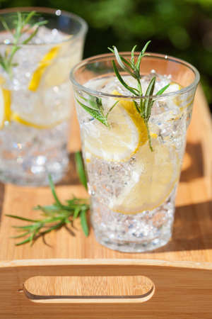 refreshing lemonade drink with rosemary in glasses 版權商用圖片 - 103124489