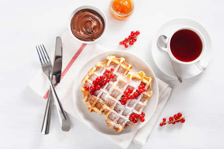 breakfast with waffle, berry, jam, chocolate spread and tea. Top view Banque d'images - 107292876