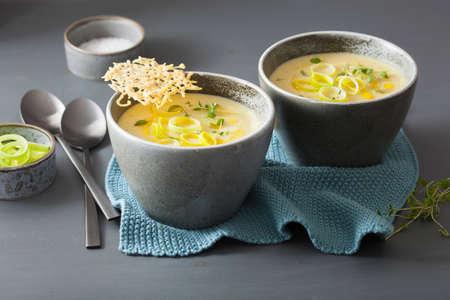 creamy potato and leek soup in bowl Reklamní fotografie