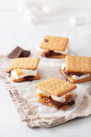 homemade marshmallow smores with chocolate on crackers