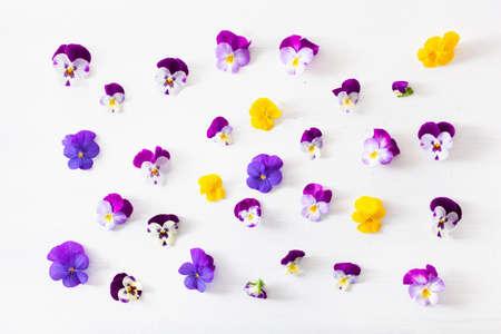 mooie viooltjes zomerbloemen flatlay op wit