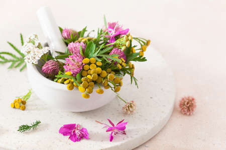 medical flowers herbs in mortar. clover milfoil tansy rosebay. healthy natural lifestyle