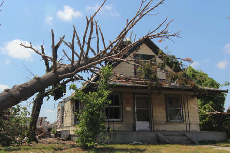 Tornado damage has shortened the life of this mature oak tree as well as the home it once shaded. 版權商用圖片 - 12410389