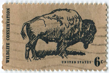 wildlife conservation: United States of American-Circa 1970  A postage stamp depicting an American Bison promoting Wildlife Conservation