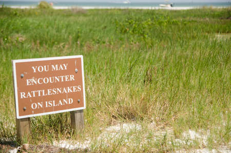 serpiente de cascabel: Signo de la serpiente de cascabel 3 Rooker Island, Florida