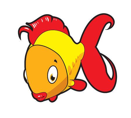 Small gold fish.
