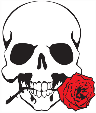 skull & rose Stock Vector - 6246947