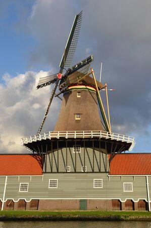 leidschendam: Mill The Salamander in Leidschendam, The Netherlands.
