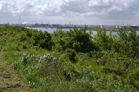 On the headland at Rozenburg is much industry to see but also nature, the port of Rotterdam  The Netherlands  photo
