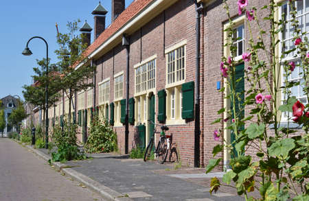 In Delft for the Hofje van Paauw bloom each year beautiful hollyhock  Stock Photo - 14689109