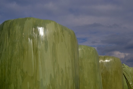 mechanization: At the farms in Zelhem, The Netherlands, hay bales are wrapped in plastic