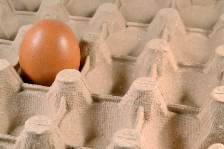 Egg tray with a free-range egg