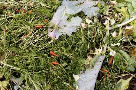 A compost heap with plant remains in the organic vegetable garden De Groentenhof in Leidschendam, Netherlands