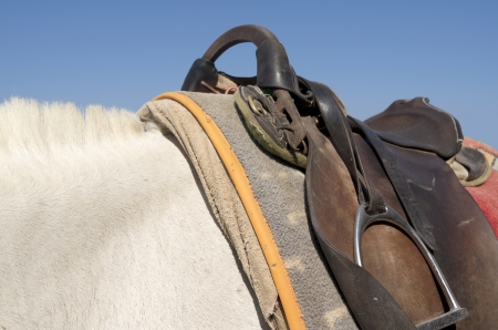 Saddle on a donkey on the island of Santorini in Greece  photo