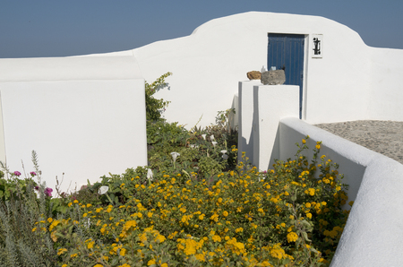 Garden of the house in Thira on Santorini in Greece  photo