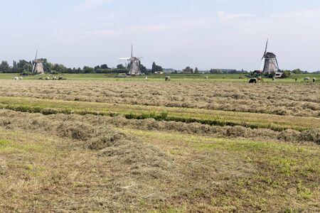 leidschendam: Pasture with three windmills and straw in Leidschendam, Netherlands.