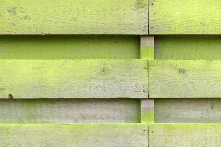 Weathered fence with wooden planks with algae in Lemmer, Netherlands.