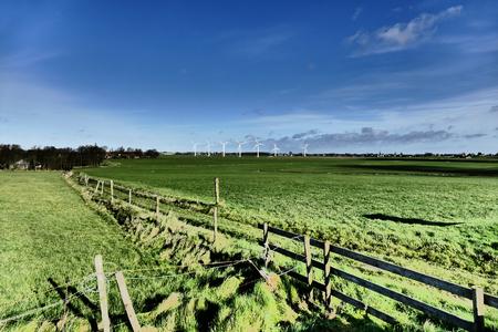 Impressive art of a meadow in Skarl in Friesland, Netherlands. Stock Photo