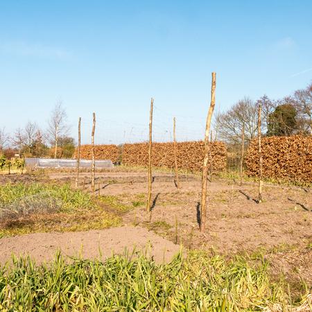 leidschendam: Organic vegetable garden The Groentenhof in Leidschendam, Netherlands. Stock Photo