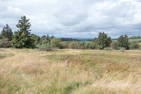 Kahler Asten landscape near Winterberg in Sauerland, Germany. Stock fotó