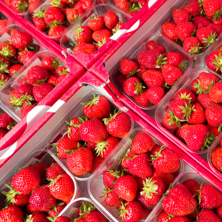 Strawberrys on the sunday market at Bomal Sur Ourthe in Belgium. Stock Photo