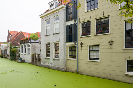 NETHERLANDS - DELFT - 2017, JULY 26: Canal houses in Delft with duckweed in the canal in the Netherlands.