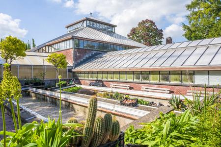 NETHERLANDS - LEIDEN - SEPTEMBER 23, 2017: Historic greenhouse in The Hortus botanicus, botanical garden in Leiden, Netherlands.