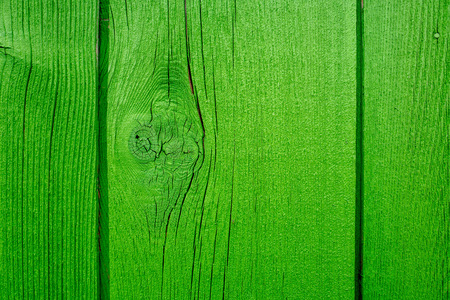 Green fence in close-up.