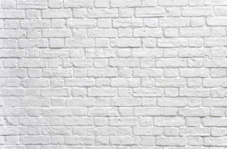 brick: White brick wall