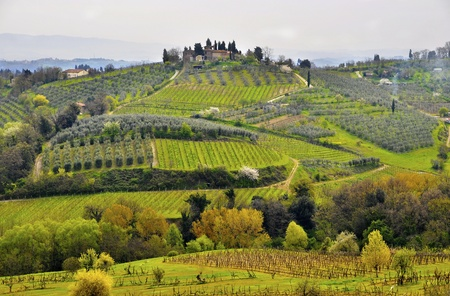 the tuscan: Typical Tuscany landscape in spring, Italy Stock Photo