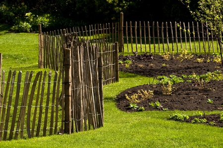 A fence in a garden in spring Stock Photo - 10442946