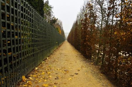 Footpath in autumn, Versailles gardens, France photo