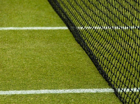tennis stadium: Lawn tennis court, white lines and net