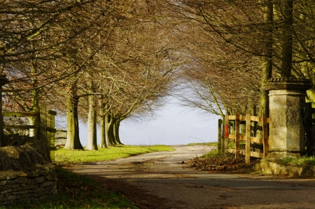 Park entry gate in winter, England, UK