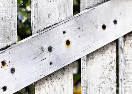decrepitude: White derelict wooden door detail