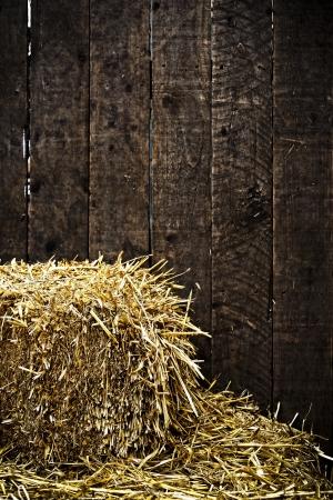 fardos: Bala de paja y el fondo de madera oscura con vi�eta